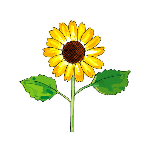 vector eps material free download sunflower rh free adranger net free vector sunflower outline free vector sunflower outline